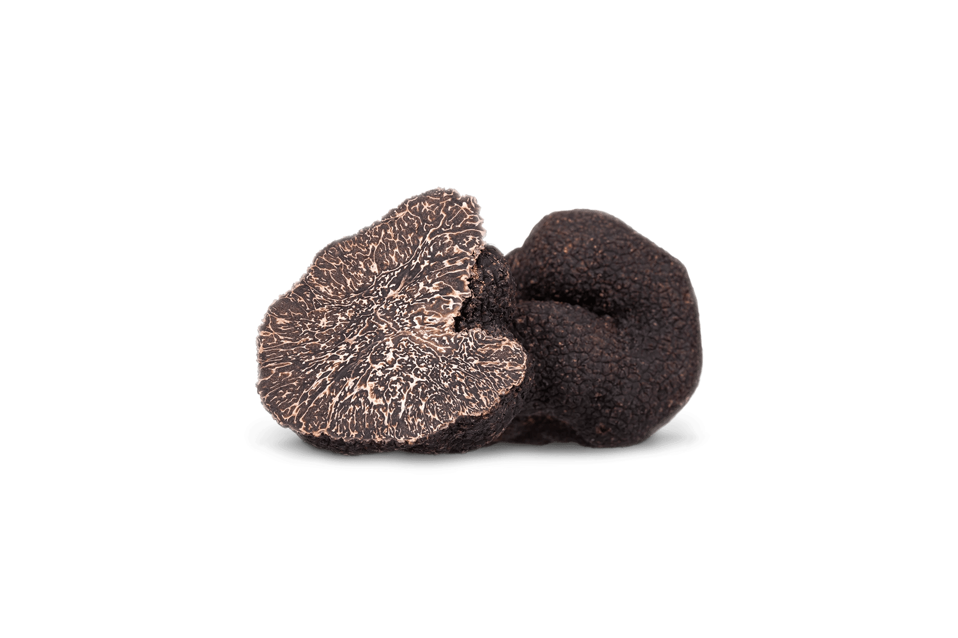 Fresh winter Black Truffle