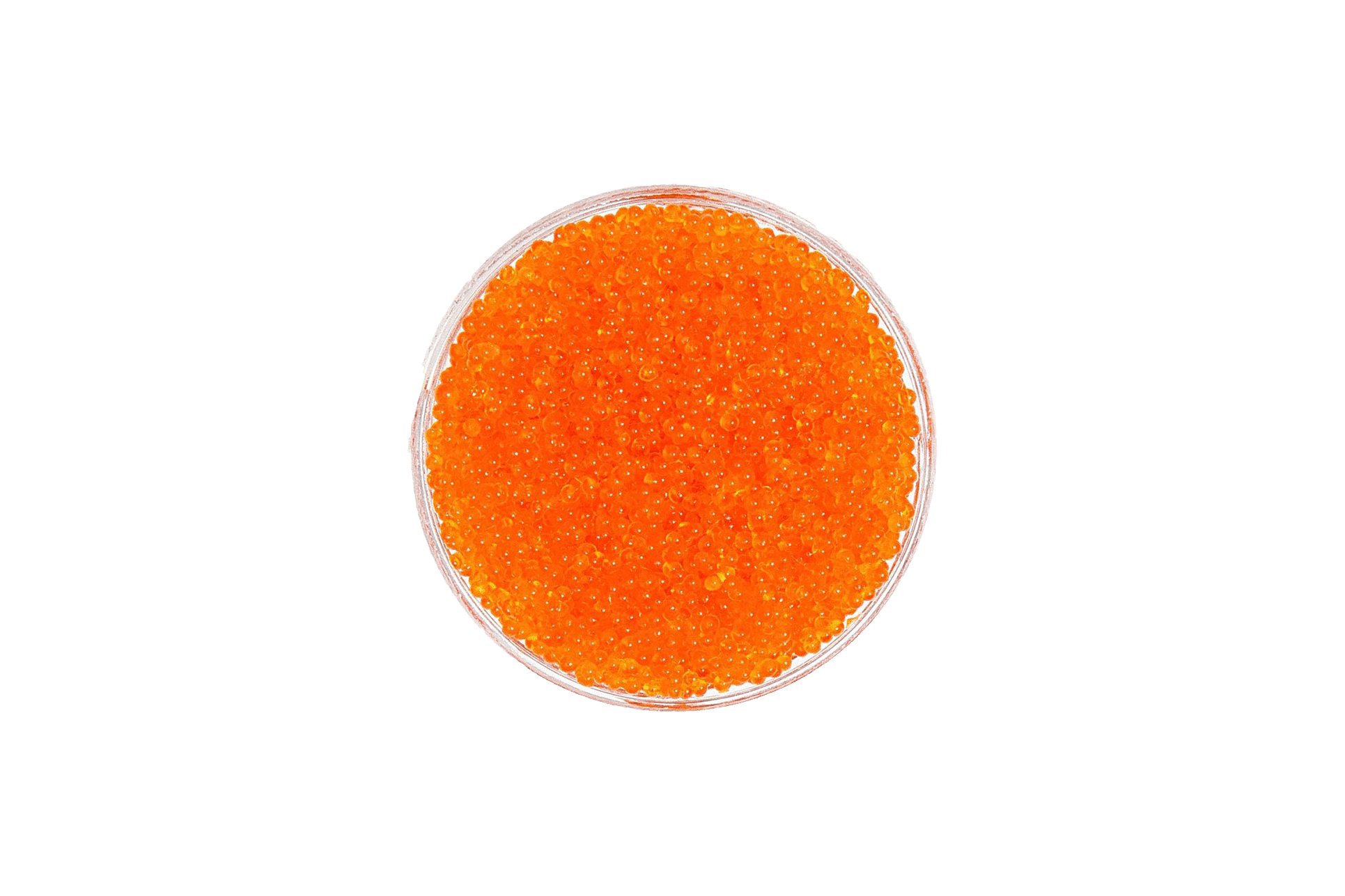Tosago orange Seaweed caviar-vegan